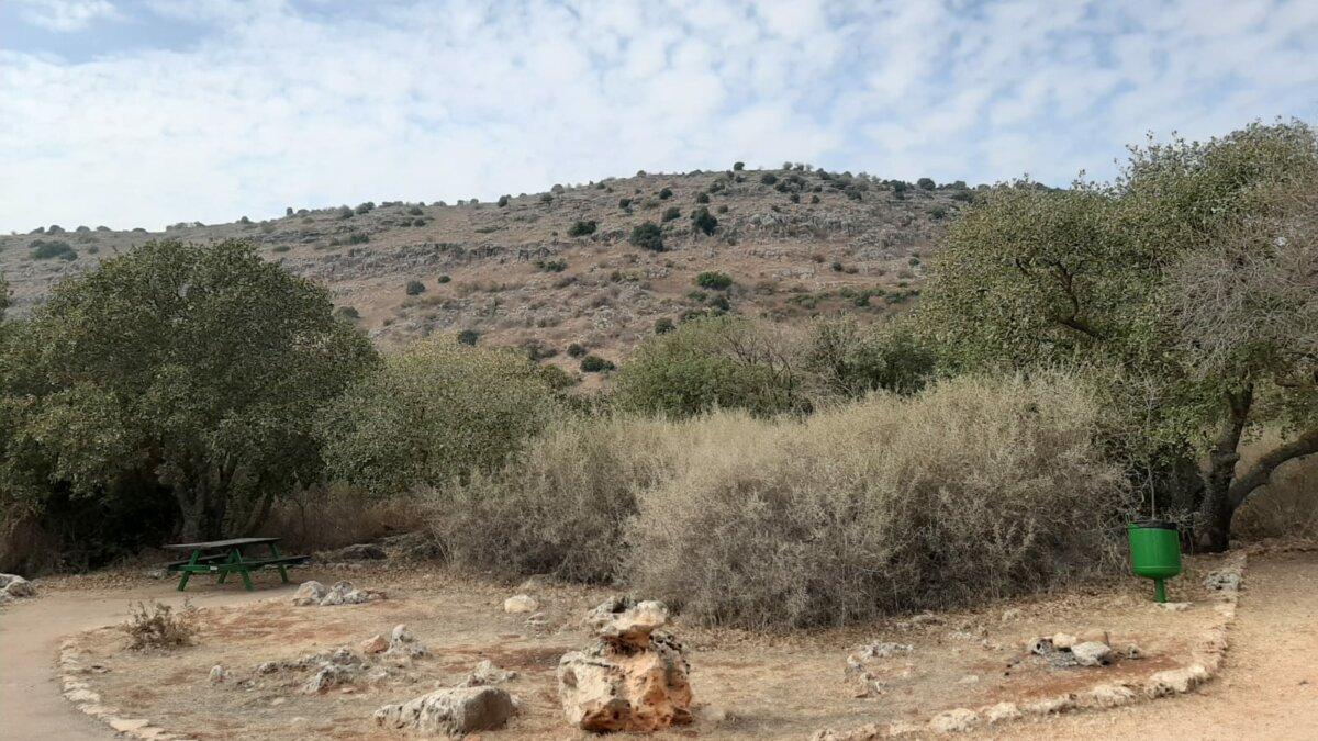 CampSite Yiftach