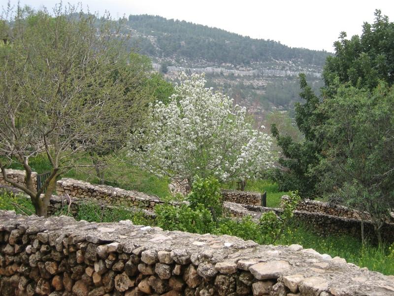 Jerusalem Area