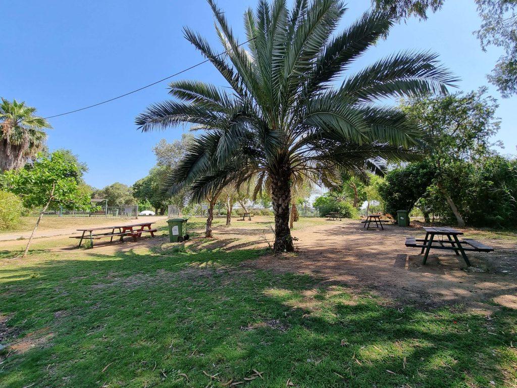 Yarkon Park picnic area